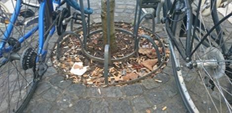 drevo-neurejeno-2